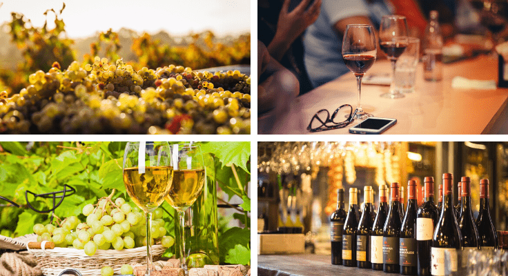 collage of glasses with white wine, bottles of wine, winery view