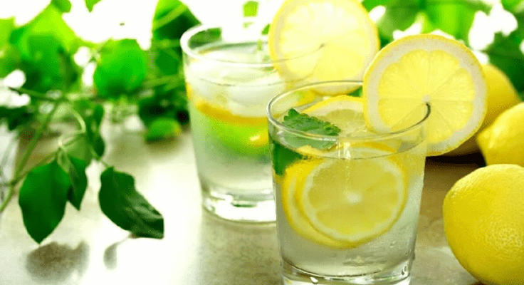 lemon slices in the water and mint leafs