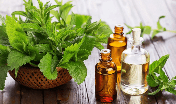 preventing hair loss in men tip# 8 use natural hair remedies for stop hair loss peppermint oil