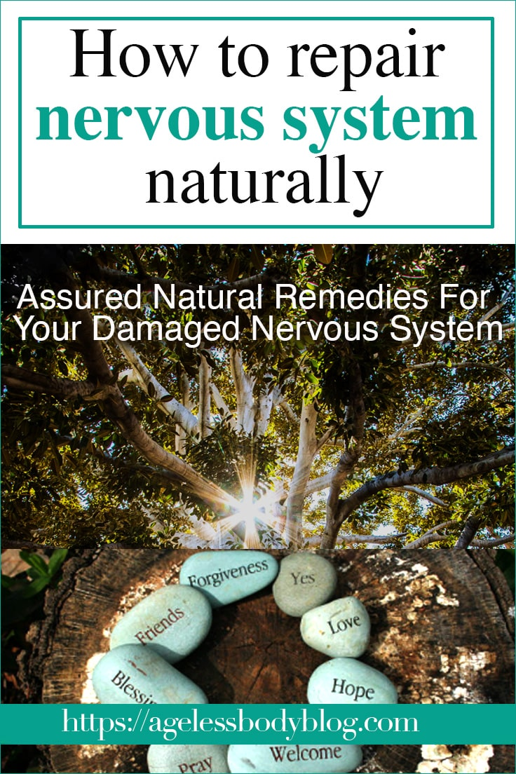 how to repair nervous system naturally cover image