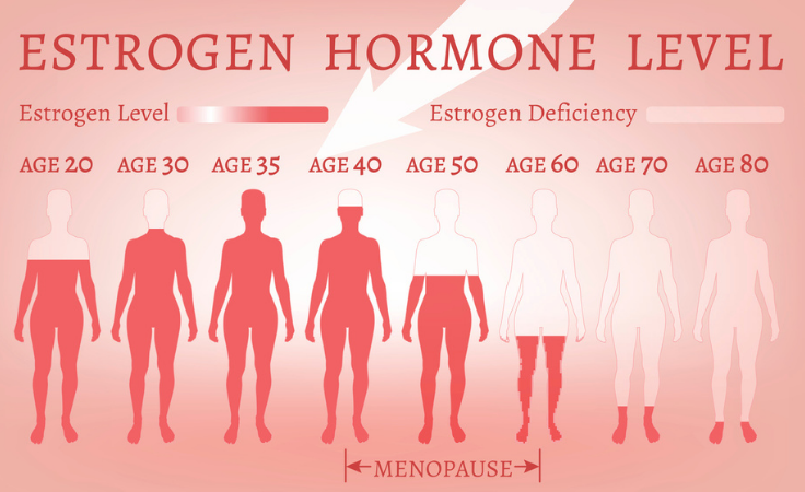 estrogen hormone levels and age of woman